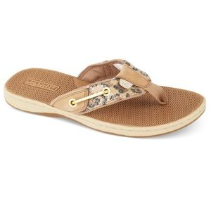 SPERRY TOPSIDERS~ Seafish Leopard Thong Sandals